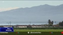 Kaliforni, fushatë për vaksinimin e punonjësve të sektorit bujqësor
