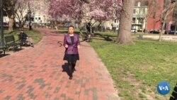 Vashington: O'zbekiston paxtasi yuzasidan qaror