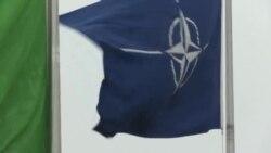 Македонија има шанса во НАТО секоја среда