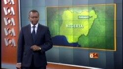 Niger Delta Politics
