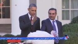 اوباما، هفتمین بوقلمون را مورد بخشش قرار داد