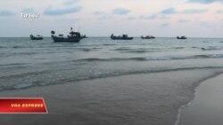 Việt Nam 'lấn cấn' trong việc công bố thông tin vụ cá chết