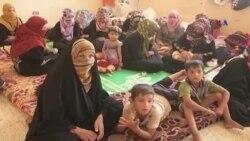 İraq qüvvələri Fəllucanı İŞİD-dən azad edib