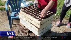 Shqipëri: Pandemia e koronavirusit dhe bujqësia