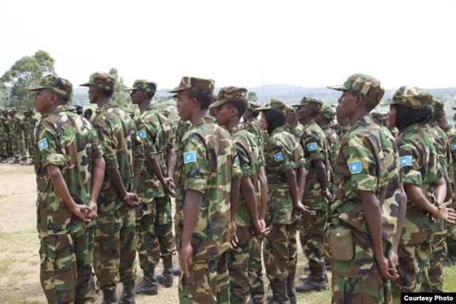Danab commando unit. (Somalia Handout Photo)