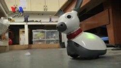 رباتی که می تواند با انسانها دوست شود