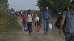 Migrants Stream Toward Croatia After Hungary Border Closure