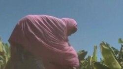 2012-02-03 粵語新聞: 聯合國﹕索馬里飢荒結束但數百萬人仍需糧食援助