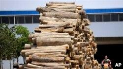 Kayu-kayu dari Myanmar yang dibawa ke China untuk dijadikan bahan meubel bagi pabrik meubel di Ruili di provinsi Yunnan, dekat perbatasan Myanmar (foto: dok).