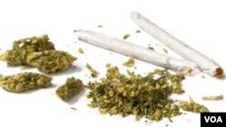 La marihuana sigue siendo prohibida a nivel federal. En Washington ya era legal para uso medicinal.