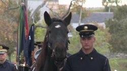 Ngựa kéo quan tài tại Nghĩa trang Quốc gia Arlington