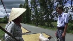 Vietnam Could Become World's Biggest Rice Exporter
