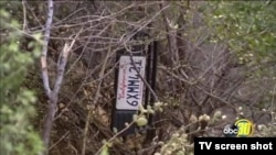 A screen capture from lacal news report showed a vechicle license plate lacated in a vicinity of a previous collision reported on July,26 2017.