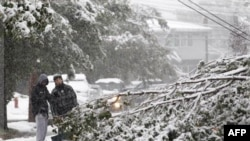 Bayron Zamora, right, 15, and Jarell Finley, 17, look at a down tree as heavy snow created issues with down lines and trees during a rare October snowstorm that hit the Northern New Jersey region, Saturday, Oct. 29, 2011, in Lodi, N.J. (AP Photo/Julio Cor