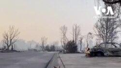 Влада про пожежі в Орегоні: це може бути найбільшою втратою людських життів в історії штату. Відео
