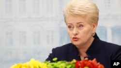 FILE - Lithuania's President, Dalia Grybauskaite, speaks during a news conference at the Presidential Palace in Vilnius, Lithuania, May 18, 2016.