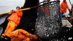 La sobrepesca es una de las problemáticas que Perú se comprometió a controlar.