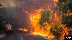 Kebakaran hutan di Australia akibat gelombang panas ekstrem (12/1). (Foto: DFES)