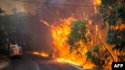 지난해 1월 12일 호주 서부 퍼스 지역에 발생한 대형 산불의 모습. <자료사진>