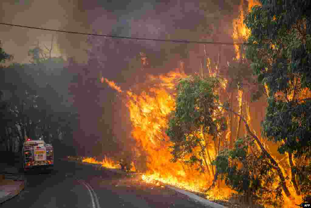 Wildfire along the edge of the road next to a firetruck in the Stoneville area, a suburb east of Perth in the state of Western Australia, Jan. 12, 2104. A man died and four other people were missing after a fast-moving wildfire destroyed at least 46 homes, officials said. (Photo provided by Australia's Department of Fire and Emergency Services)