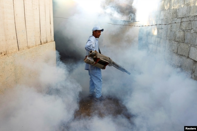 FILE - A health ministry worker fumigates a house to kill mosquitoes in Managua, Nicaragua, Oct. 27,2016.