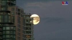 """Los cielos de todo el planeta lucen una """"súper luna"""""""