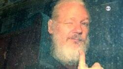 ¿Primera enmienda estadounidense podría proteger a Assange?