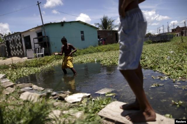Children play in water at a slum in Recife, Brazil, March 2, 2016.