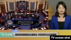 VOA连线:美参院持续就税改法案辩论,共和党称已达足够票数