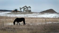 [타박타박 미국 여행 오디오] '블랙골드러시' 번창하는 석유 산업, 노스다코타