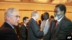 参加和谈的南苏丹政府代表团成员与西方观察员在埃塞俄比亚首都的一家酒店会面。(2013年1月4日)