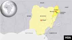 The military earlier this month announced it would be storming Sambisa Forest, northeastern Nigeria.