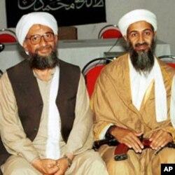 ایمن الظواہری اسامہ بن لادن کےہمراہ