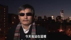 陈光诚发表世界人权日重要视频讲话