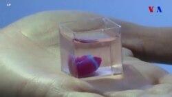 İsrail alimləri ilk dəfə olaraq 3D printerindən istifadə edərək ürək hazırlayıblar