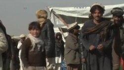 مهاجرت هزاران پناهجوی پاکستانی به افغانستان