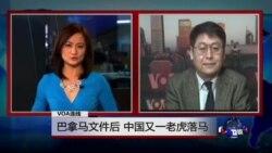 VOA连线: 巴拿马文件后 中国又一老虎落马
