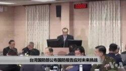 台湾国防部公布国防报告应对未来挑战