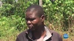 Agricultura Sustentável em Malanje começa a ser uma realidade
