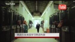 韩流引发美国学习韩语热潮