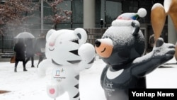 한국 세종 지역에 첫눈이 내린 23일, 평창올림픽 마스코트인 수호랑과 반다비 위로 하얀 눈에 쌓여 있다.