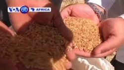 VOA60 Africa - July 22, 2013