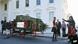 Michelle Obama with daughters Sasha and Malia and family dog Bo welcomes the arrival of the official White House Christmas tree, a 19-foot Fraser Fir from Jefferson, N.C., Nov. 23, 2012.