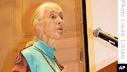 Renowned Conservationist Promotes Hope for a Better Planet