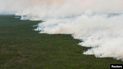 Blaze Escapes Wildlife Refuge Prompts Scores To Flee In Georgia