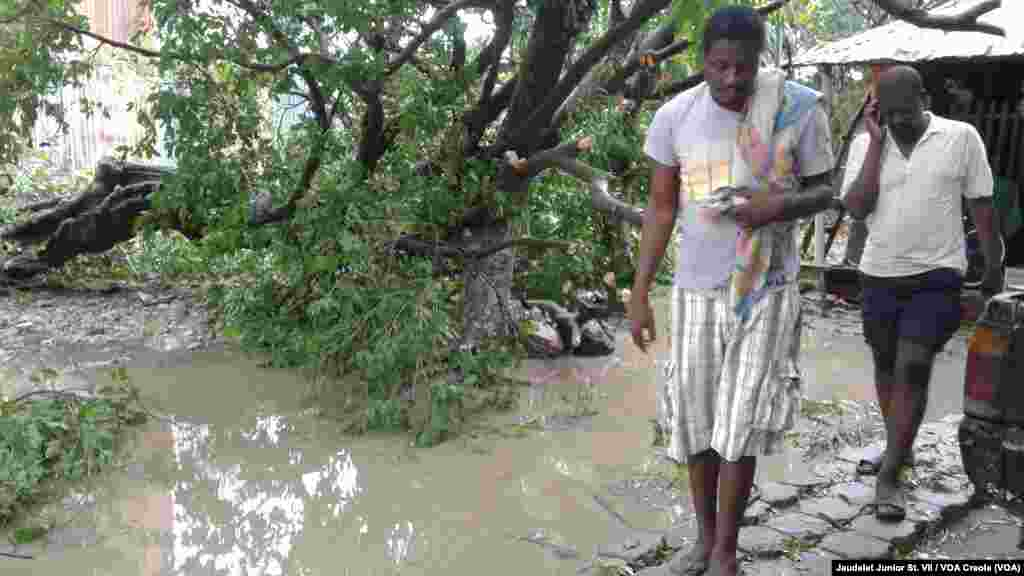 Two men walk away from a flooded area in Fort-Liberté, Haiti, where a tree collapsed in the main street. Hurricane Irma continues to approach the north coast of Haiti with heavy rain and strong winds, Sept. 7, 2017.