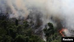 Пожежі в джунглях Амазонки