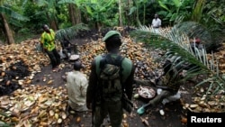 FILE - A pro-Ouattara soldier belonging to the Republican Forces of Ivory Coast (FRCI) stands near farmers breaking open cocoa pods in this file photo from May 19, 2011. The government wants to clear farmers from 231 forest preserves.