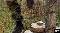 12 năm sau Hiệp định cấm sử dụng mìn 1997 được thương thuyết, tiến độ hành động và mức cam kết của nhiều quốc gia nhằm dẹp bỏ mìn bẫy vẫn mạnh mẽ hơn bao giờ hết