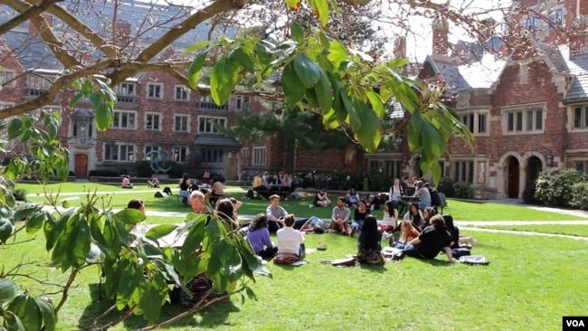 Yale University campus in New Haven, Connecticut, 2017
